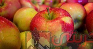 تفسير حلم رؤية التفاح أو أكل فاكهة التفاح في المنام