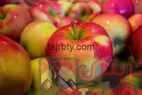 Photo of تفسير حلم رؤية التفاح أو أكل فاكهة التفاح في المنام