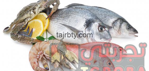 Photo of تفسير رؤية السمك في المنام