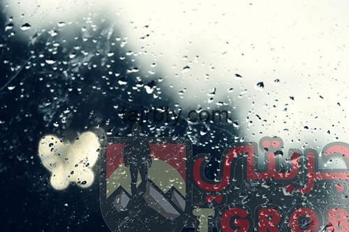 Photo of تفسير رؤية المطر