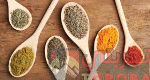 علاج الدهون الثلاثية للدكتور عبد الباسط السيد