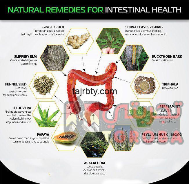 Photo of علاج القولون بالأعشاب