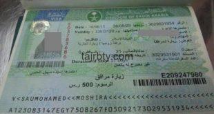 الاستفسار عن طلبات تأشيرات العمل وزارة العمل