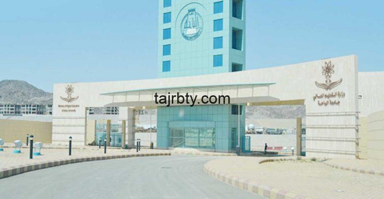 Photo of تسجيل دخول بلاك بورد جامعة الباحه